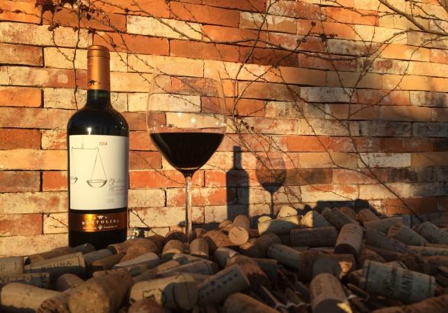 Vinhos Bertolini