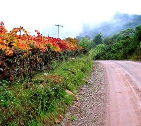 Caminhos de Pedra - Serra Gaúcha - Site Guiabento